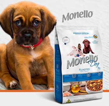 Monello Dog Cachorros